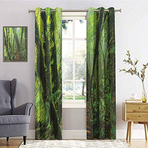 Forest 100% blackout lining curtain Entrance to Deep Dark Evergreen Jungle Magical Surreal Extreme Vivid Plants Jungle Full shading treatment kitchen insulation curtain W72 x L108 Inch Green Brown