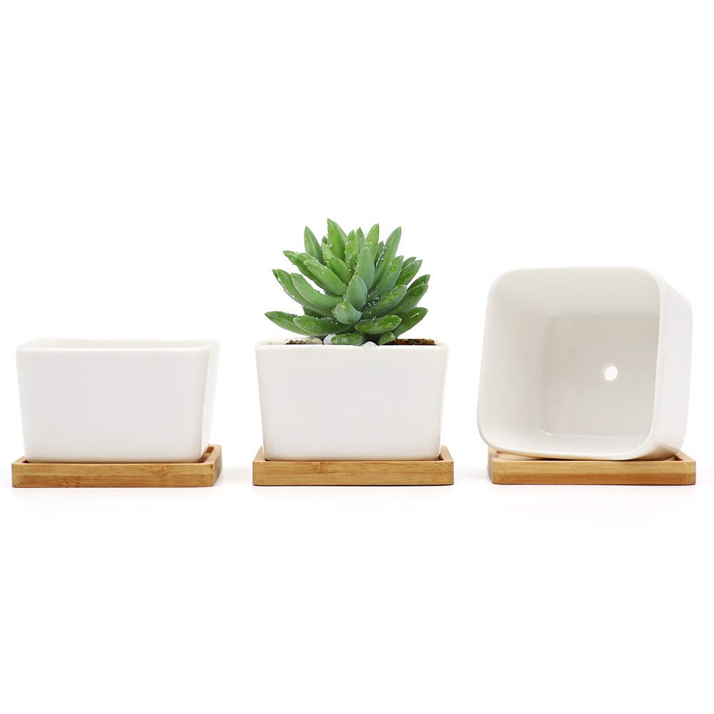 UFIG White Ceramic Square Succulent Planter Pot Cactus with Removable Tray – Pack of 3
