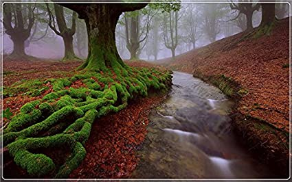 Paisaje Natural de la España es hermoso paisaje Características creativas turismo Souvenir Postcard Post tarjeta: Amazon.es: Oficina y papelería