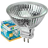 Long Life Lamp Company MR16 35 W Halogen Bulbs GU5.3 Lamp 12 V with Aluminium Reflector - Warm White, Pack of 10