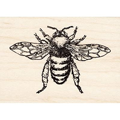 Large Honey Bee Rubber Stamp: Arts, Crafts & Sewing