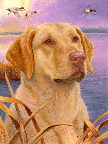 【2019春夏新作】 「Dawn Patrol」A Limited Edition 「Dawn Chesapeake Bay Bay Edition Retriever印刷 B076WQ3PWR, 革小物市場 「ディスタンス」:5d1947e6 --- clubavenue.eu