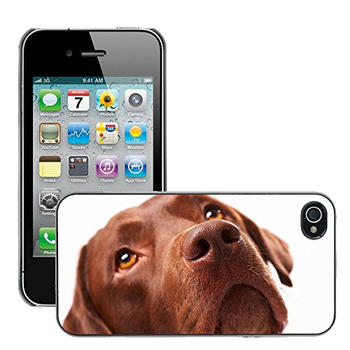 Premio Sottile Slim Cassa Custodia Case Cover Shell // V00002149 Chien // Apple iPhone 4 4S 4G