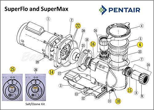 amazon com pentair superflo supermax go kit complete pump o amazon com pentair superflo supermax go kit complete pump o ring rebuild kit patio lawn garden