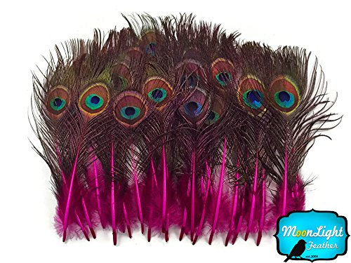 Peacock Feathers, Tail Feathers, Hot Pink Mini Natural Peacock Tail Body Feathers with Eyes Hot Bodies Tail Body