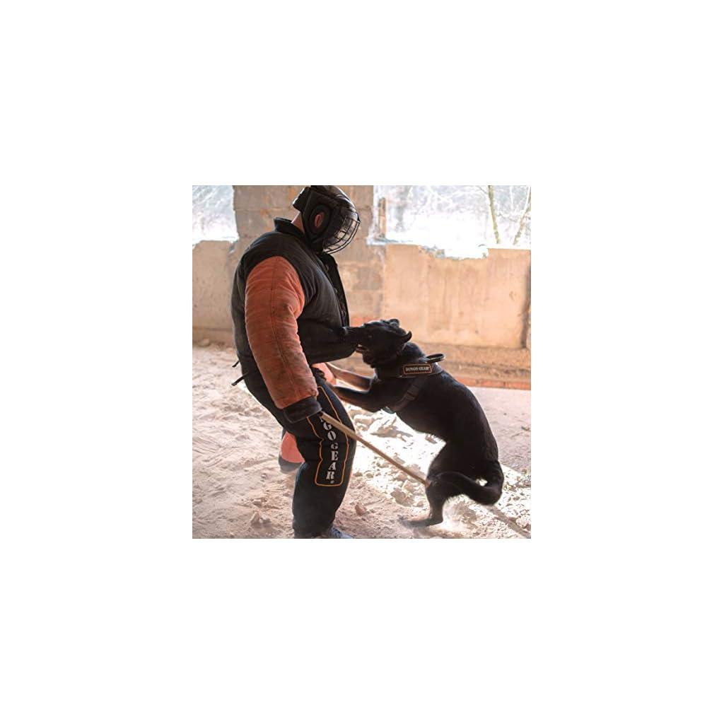 Dingo Gear Dog Bite Suit