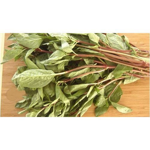 Fresh Basil (Fresh Thai basil - 16 oz (approx 30 stalks))