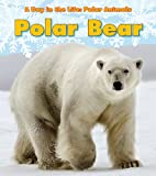 Polar Bear (A Day in the Life: Polar Animals)