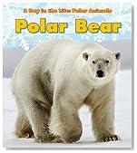 Polar Bear (A Day in the Life: Polar Animals)