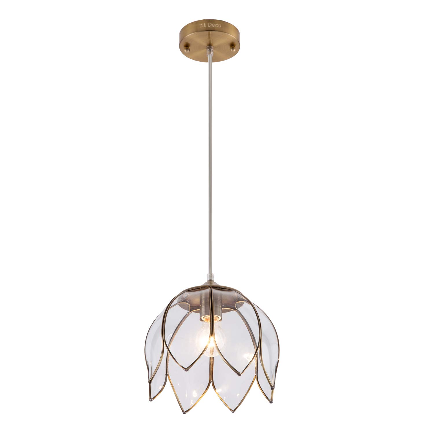 YIFI Deco Brass Pendant Light Lotus Vintage Glass Adjustable Ceiling Pendant Light for Kitchen Island Dining Room Bedroom Living Room, Clear
