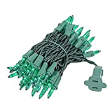Novelty Lights 50 Light Green Christmas Mini Light Set, Green Wire, 11' Long
