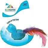 R2P Categories Twinkle Tweet Bird Interactive Toy