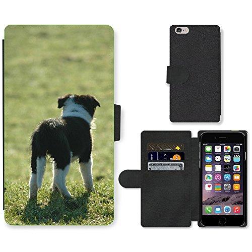 "Just Phone Cases PU Leather Flip Custodia Protettiva Case Cover per // M00128738 Chiot Border Collie Dog Prairie // Apple iPhone 6 PLUS 5.5"""