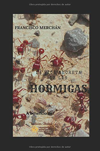 La vida secreta de las hormigas (A beneficio de la Fundación Aladina)  [Merchán, Francisco] (Tapa Blanda)