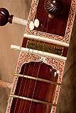Sardar Pro Single Toomba Sitar w/ Gig Bag