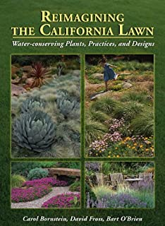 Plants and landscapes for summer dry climates of the san francisco reimagining the california lawnwater conserving plants practices and designs fandeluxe