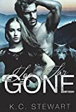Too Far Gone (Adirondack Pack Book 1)