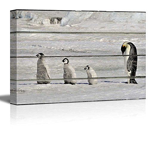Three Little Penguins and Their Mother on Vintage Wood Textured Background Rustic Country Style