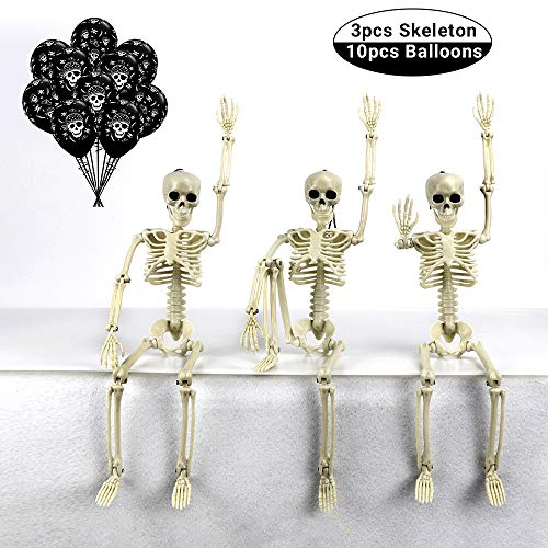 TONGN Posable Halloween Skeleton- 3pcs 19in Full Body Halloween Skeleton with Movable /Posable Joints for Best Halloween Decoration and 10pcs Skeleton ()