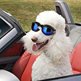 PETLESO Dog Doggles for Large Dogs Goggles Eye Wear Protection Waterproof Doggles Black
