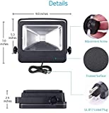 30W RGB Flood Light, LOFTEK Outdoor Color