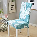 VHSKHDKS Beach Style Printing Dining Chair Cover Removable Elastic Seat Chair Protector for Hotel Banquet Home Wedding Decoration Color 16 Universal Size