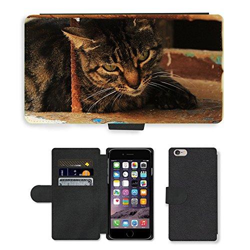"Just Phone Cases PU Leather Flip Custodia Protettiva Case Cover per // M00128025 Cat Window été Maçonnerie Sit // Apple iPhone 6 PLUS 5.5"""