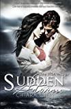 Sudden Storm: Volume 1