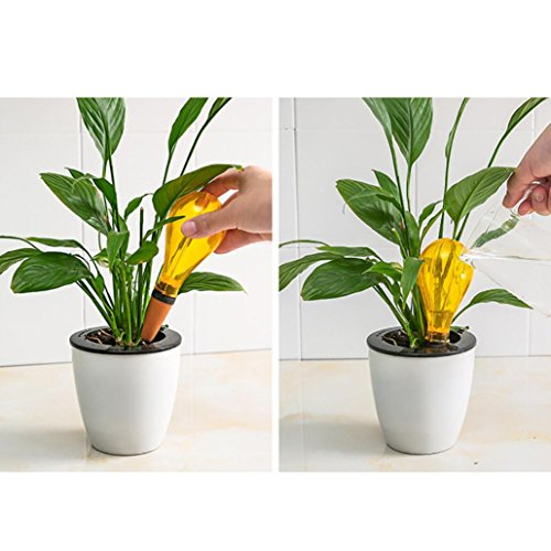 Interior Plant Watering Equipment on lawn equipment, weighing equipment, gardening equipment, fertilizer equipment, plant equipment, hunting equipment, farming equipment, wedding equipment, washing equipment, mowing equipment, landscaping equipment, pond equipment,