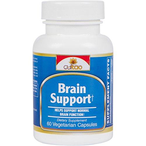 Premium cerebro soporte suplemento con Europea estandarizada 24% Ginkgo Biloba extracto, SerinAID® (complejo de fosfatidilserina), acetil L-carnitina, DHA® - 60 Vcaps - fórmula vegetariana de la vida