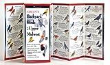 Sibleys Backyard Birds of Mid Atlantic, David Allen Sibley, 1935380095