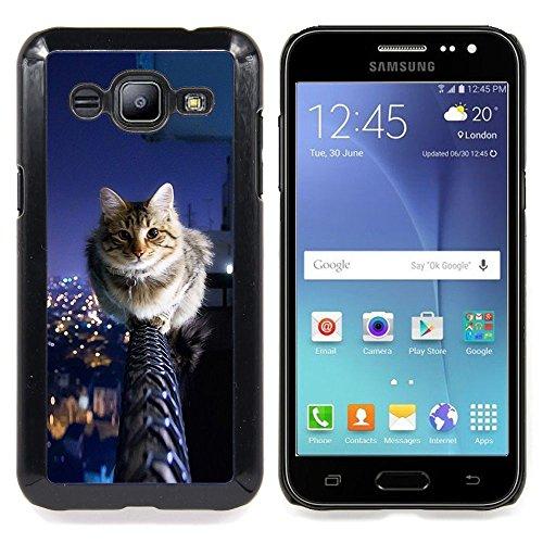 STPlus Gato en una caja Animal Carcasa Funda Rigida Para Samsung Galaxy J2 #27