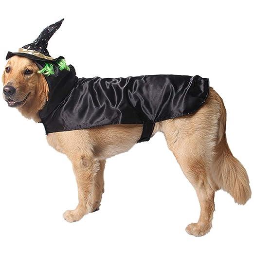 SHOW-WF Disfraz De Perro De Halloween, Disfraces De Halloween para ...