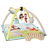 Skip Hop Baby Activity Gym - Woodland Friends