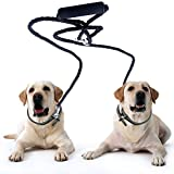 Peteast Dual Double Dog Leash No Tangle W Soft Handle for Two Small/Medium Dogs