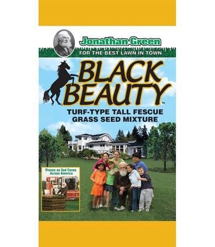 Jonathan Green & Sons, 25lb Blk Beauty Seed