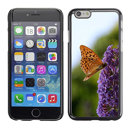"""Bild Hart Handy Schwarz Schutz Case Cover Schale Etui // M00135325 Monarch Butterfly Blume bestäubt // Apple iPhone 6 PLUS 5.5"""""""