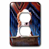 3dRose Danita Delimont - Puppies - Cavalier Puppy coming out of ceramic flower pot, MR - Light Switch Covers - 2 plug outlet cover (lsp_258249_6)