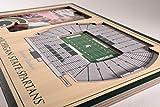 NCAA Michigan State Spartans 3D StadiumViews