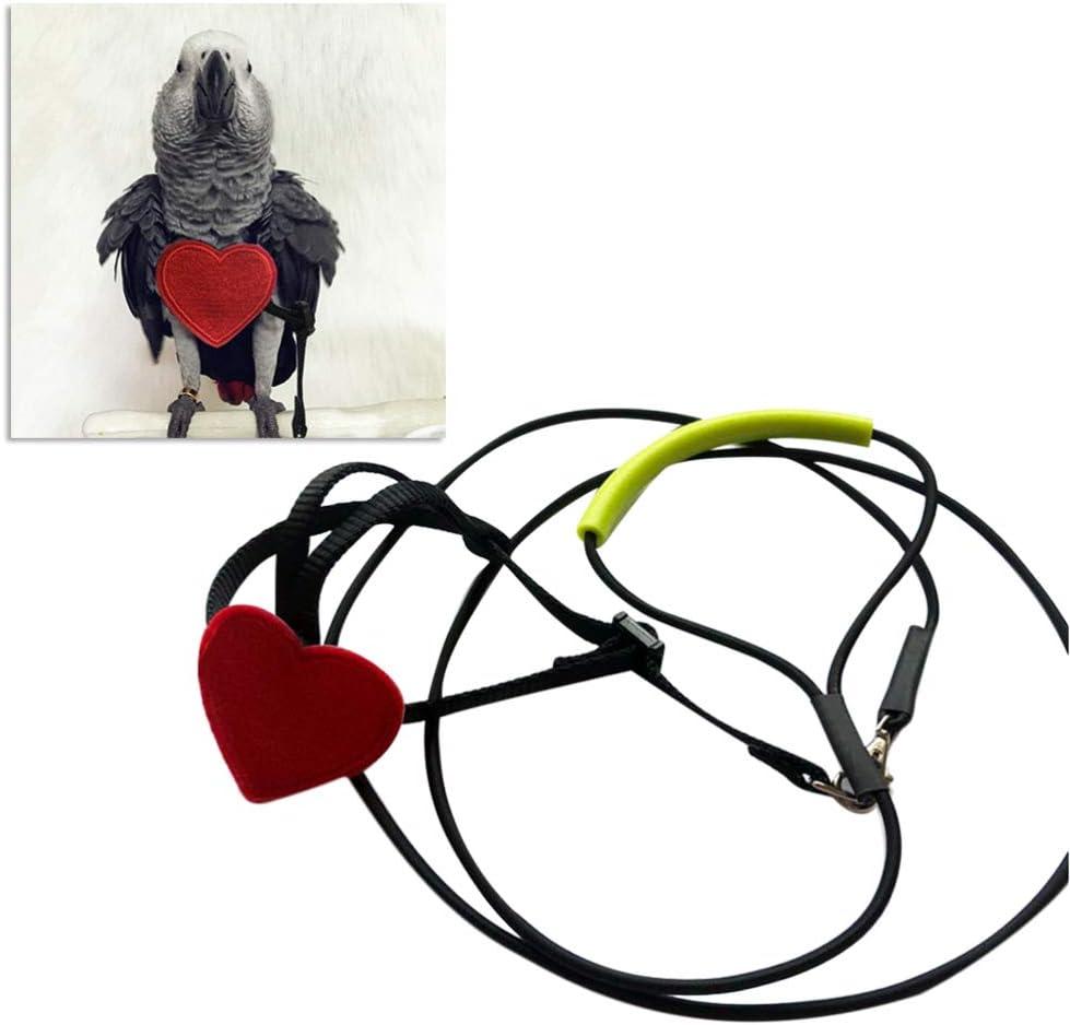 POPETPOP arnés para pájaros - Correa de Loro Correa de pájaro Ajustable Loro Mascotas Cuerda de Entrenamiento de Vuelo al Aire Libre para pequeñas Aves Medianas - Talla m
