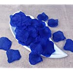 Fantasee-3000-Pieces-Artificial-Rose-Petal-Fake-Flower-Petal-for-Wedding-Party-Decoration-Colors-Sorted-Pink-Red-Blue-Purple-Rose-Red