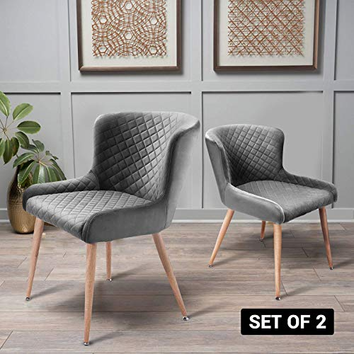 Nueve&Five Accent Dining Chairs Set of 2, Mid Century Upholstered Velvet Leisure Chairs with Tapered Steel Legs for Bedroom Reception Room Dining Room, Ash Gray
