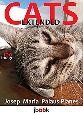 Cats [extended]