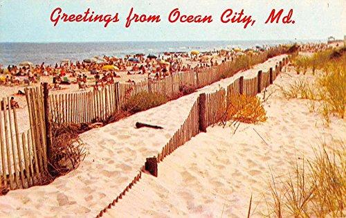Ocean City Maryland Bathing Beach Fence Greeting Vintage Postcard K94946