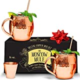 Benicci Moscow Mule Copper Mugs – 100% HANDCRAFTED – Food Safe Pure Solid Unlined Copper Mug 16 oz Gift Set with BONUS: Highest Quality Cocktail Copper Straws, Shot Glass and Spoon (Set of 2) For Sale