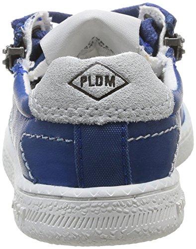 PLDM by Palladium Malo Cash - Zapatillas de Deporte de Cuero infantil azul - Bleu (Blue)