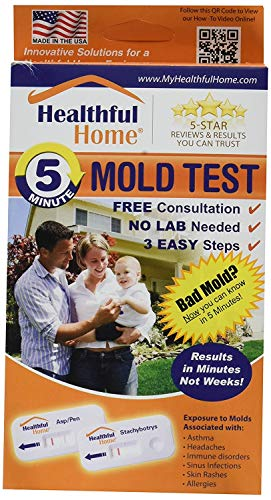 Healthful Home 5-Minute Mold Test … (2 Pack) by HEALTHFUL HOME