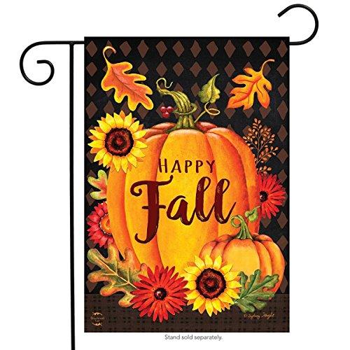 Leaves Garden Fall Flag - Briarwood Lane Happy Fall Pumpkin Garden Flag Autumn Leaves 12.5