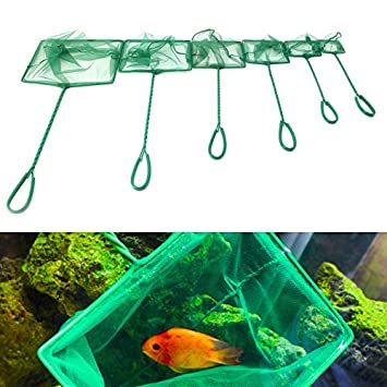 SuperAqua - Red de Acuario para Tanque de Peces Tropical, Agua fría, Color Marino, 20,3 cm: Amazon.es: Productos para mascotas
