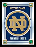 NCAA Notre Dame Fighting Irish ''ND'' Logo Mirror, 17 X 22-Inch